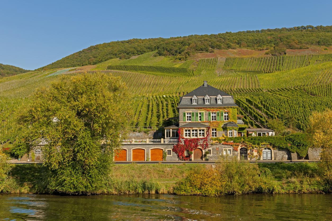 Poznejte krásy Německa a vydejte se po vinařských stezkách pěšky nebo na kole