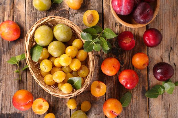 Netradiční letní ovoce - mirabelky a špendlíky Foto: