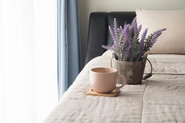 Levandule provoní váš byt a lépe usnete. Foto: