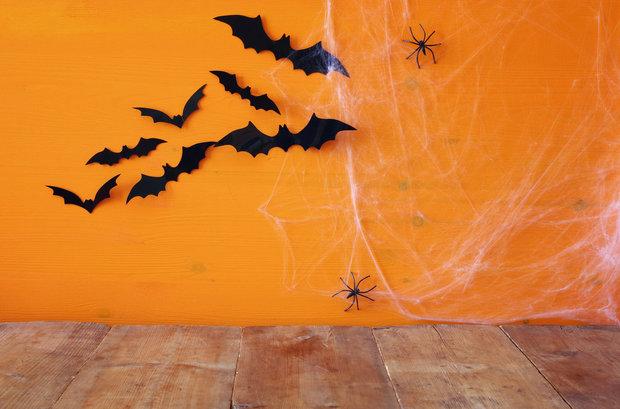 Bez pavučin o Halloweenu ani ránu! Foto: