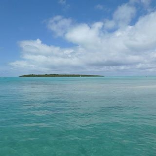 Ostrov Ile aux Aigrettes Foto: facebook