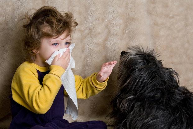 Pozor na alergii. Foto: