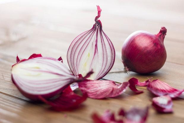 Cibule je královnou české kuchyně 3 Foto: