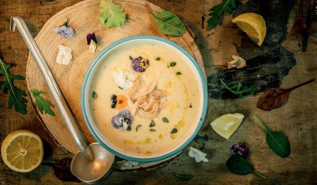 Krémová kuřecí polévka s bílým vínem  Foto: