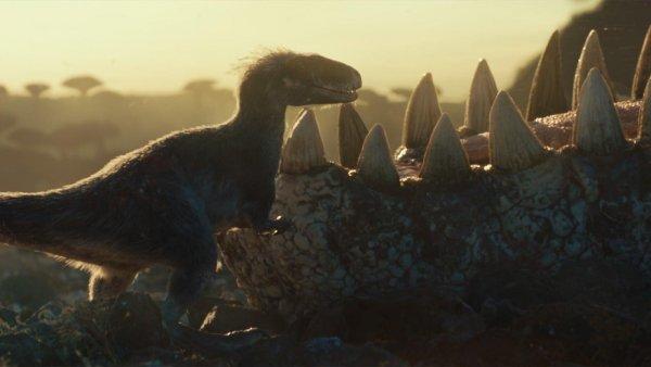 První záběry zJurského světa 3 konečně ukazují realistické dinosaury. Filmaři si nanich opravdu dali záležet